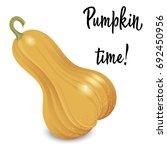 oblong orange pumpkin isolated... | Shutterstock .eps vector #692450956