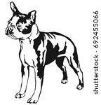 decorative portrait of standing ... | Shutterstock .eps vector #692455066