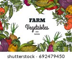 vegetables top view. organic... | Shutterstock .eps vector #692479450