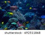 underwater background.... | Shutterstock . vector #692511868