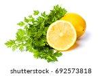 lemon and parsley leaves... | Shutterstock . vector #692573818