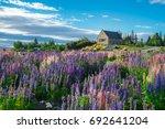 church of the good shepherd and ... | Shutterstock . vector #692641204