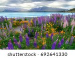 landscape at lake tekapo and... | Shutterstock . vector #692641330