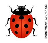 coccinellidae ladybug or... | Shutterstock .eps vector #692714533