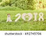 adorable wire fox terrier dog... | Shutterstock . vector #692745706