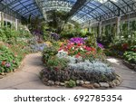 many beautiful flowers... | Shutterstock . vector #692785354