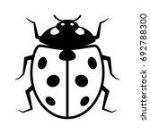 coccinellidae ladybug or...