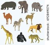 african animals cartoon vector... | Shutterstock .eps vector #692849074