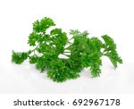 parsley isolated on a white... | Shutterstock . vector #692967178