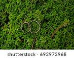 wedding rings on green moss in... | Shutterstock . vector #692972968