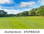 green grass and trees in... | Shutterstock . vector #692986018