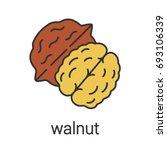 walnut color icon. hazelnut....   Shutterstock .eps vector #693106339