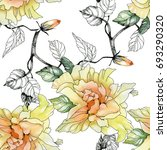 watercolor yellow roses and... | Shutterstock . vector #693290320