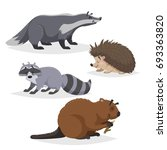 forest animals set. badger ... | Shutterstock .eps vector #693363820