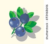 vector blueberry colorful... | Shutterstock .eps vector #693468646