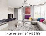 dog sleeping in contemporary... | Shutterstock . vector #693493558