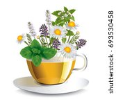 herbal tea in a transparent cup ... | Shutterstock .eps vector #693530458