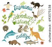 the flora and fauna of tasmania.... | Shutterstock .eps vector #693575158