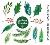 watercolor christmas branches...   Shutterstock . vector #693578749