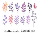 hand drawn watercolor... | Shutterstock . vector #693582160