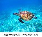green sea turtle in sea water.... | Shutterstock . vector #693594304