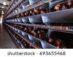 factory chicken egg production. ...   Shutterstock . vector #693655468