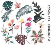 exotic dark tropical  flowers ... | Shutterstock .eps vector #693769228