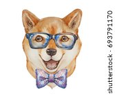 dog. funny dog. watercolor... | Shutterstock . vector #693791170