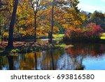 autumn forest  landscape | Shutterstock . vector #693816580