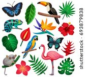 colored and isolated tropical... | Shutterstock .eps vector #693879838