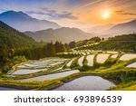 Rice Terraces At Sunset In...