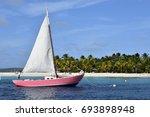 Pink Sail Boat