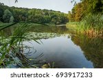 view on one of the lakes in... | Shutterstock . vector #693917233