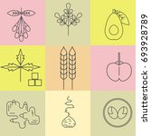 superfood line icons set. color ...   Shutterstock .eps vector #693928789