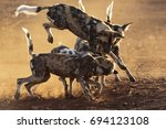 wild dog game | Shutterstock . vector #694123108