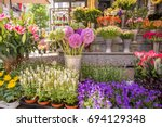 Beautiful Colorful Flowers In...