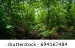 green forest | Shutterstock . vector #694167484