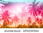 palm trees on a beautiful...   Shutterstock . vector #694234564