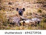 hyena in kenya | Shutterstock . vector #694273936