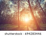 coniferous forest at sunrise or ... | Shutterstock . vector #694283446