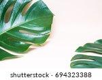 monstera leave isolated... | Shutterstock . vector #694323388