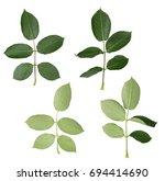 set of rose leaves. full depth... | Shutterstock . vector #694414690