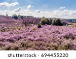 posbank national park veluwe ... | Shutterstock . vector #694455220