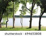 park with green grass and tree | Shutterstock . vector #694653808