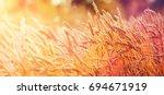 majestic views. wheat field... | Shutterstock . vector #694671919