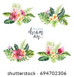 hand drawn watercolor tropical... | Shutterstock . vector #694702306