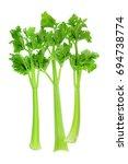 celery on white background | Shutterstock . vector #694738774