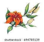 Orange Lilium Branch