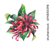 watercolor star anise plant... | Shutterstock . vector #694850398