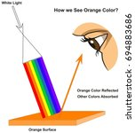 how we see orange color... | Shutterstock .eps vector #694883686
